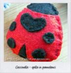 coccinella rossa_gall